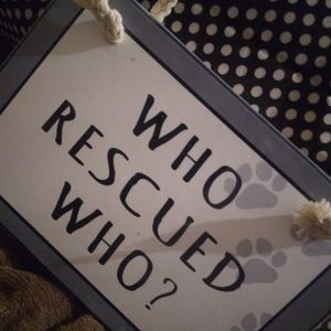 Who Rescued Who, Ceramic Wall Hanging